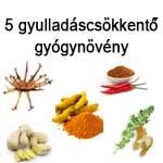 5 gyulladáscsökkentő gyógynövény