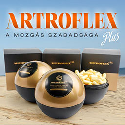 Artroflex Plus