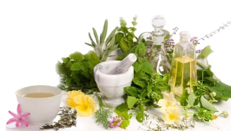 gyógyító gyógynövények ízületi fájdalmak kezelésére)